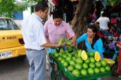 Avokado - Neiva. Colombia royaltyfria foton