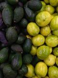 Avokado och citroner fotografering för bildbyråer
