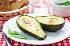 Avokado som bakas med ägget Royaltyfri Foto