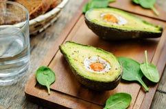 Avokado som bakas med ägget Fotografering för Bildbyråer