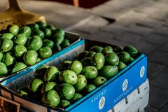 Avokado som säljs i gatamarknaden royaltyfri fotografi