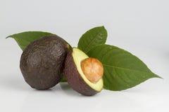 Avokadofrukter som isoleras på vit bakgrund arkivbilder