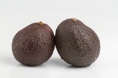 Avokadofrukter som isoleras på vit bakgrund royaltyfri bild