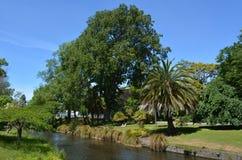 Avon河克赖斯特切奇-新西兰的风景 库存照片