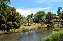 Avon河克赖斯特切奇-新西兰的风景 免版税库存照片