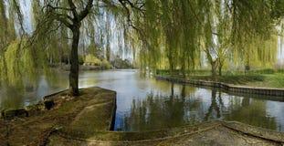 avon flod Royaltyfri Fotografi