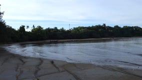 Avond van de 75 Miljoen Jaar van Oude Fossiele Shell Beach Cemetery, Susan Hoi, Shelly Limestone in Krabi-provincie Thailand aan stock footage