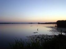 avond Zonsondergang over het meer Royalty-vrije Stock Afbeelding