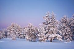Avondlandschap in de winter royalty-vrije stock afbeeldingen