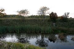 Avondlandschap met rivier Stock Foto