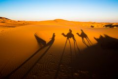 Avondschaduwen van een Kameelcaravan op de Sahara stock foto's