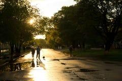 Avondstraat na regen Stock Foto's