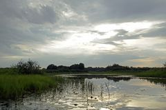 Avondzonsondergang over de rivier Pripyat Wolken juli De zomer Witrussisch landschap stock afbeeldingen