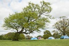 Avonturen het kamperen tent op groene weide onder overgehelde boom royalty-vrije stock afbeeldingen