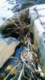 Avonturen op de zeedijk Stock Afbeeldingen