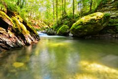 Avrig river in forest. Avrig river flowing through forest stones, Romania Stock Image