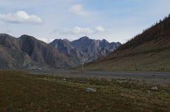 Avril dans Altai  Images stock