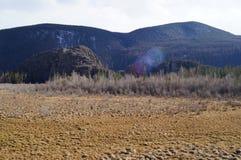 Avril dans Altai  Image libre de droits