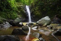 Avskild vattenfall i en djungel, Costa Rica Arkivbilder