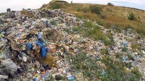 Avskräde på obehörig nedgrävning av sopor som är bevuxen med ogräs Fågel`-s-öga sikt lager videofilmer