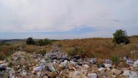 Avskrädeförrådsplats i bevuxna buskar långsam rörelse lager videofilmer