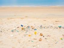avskum för förorening för algstrandkemikalieer förfallet foamy till Arkivfoton