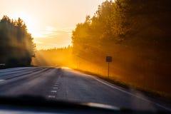 Avslappnande biltur längs lokal skog på gryningen royaltyfria foton
