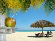 Avslappnande folk på tropisk strand Fotografering för Bildbyråer