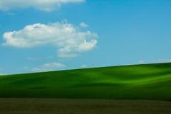 Avslappnande gräsfält Royaltyfri Fotografi