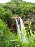 Avslappnande landskap hawaii Arkivfoton