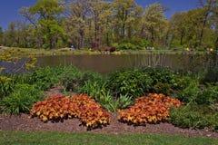 Avslappnande sikt av en trädgård med sjön arkivfoton