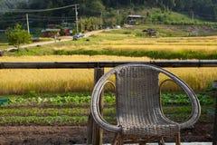 Avslappnande stol med gula ris terrasserar bakgrund Royaltyfri Bild