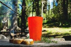 Avslappnande tid som campar på ett berg fotografering för bildbyråer
