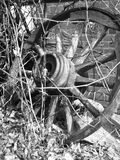 avsluta kullhistoria Royaltyfria Bilder