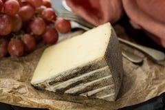 Avsmakning av mjuk ost Tomme för forntida fransk demi från den franska fjällängen Royaltyfria Foton