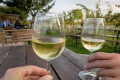 Avsmakningvin som är utomhus- i en vingård Royaltyfri Fotografi