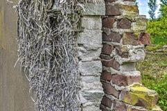 Avsnitt av en tegelstenvägg royaltyfri fotografi