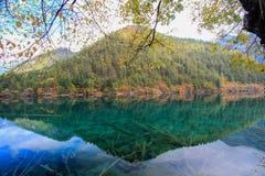 Avspegla sjön, Jiuzhaigou, nord av det Sichuan landskapet, Kina fotografering för bildbyråer
