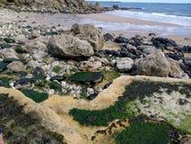 avstängd strand Arkivbild