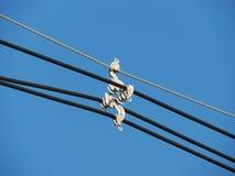 Avståndsmätare för elektricitetsöverföringskabel Arkivfoton