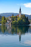avtappad lake slovenia royaltyfria bilder