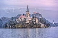 avtappad lake slovenia Royaltyfria Foton