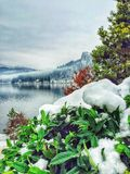 avtappad lake slovenia Arkivbild