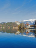 avtappad lakeslovenia vinter Royaltyfri Fotografi
