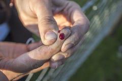 avtappande klippt finger Royaltyfri Fotografi