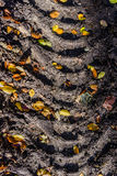 Avtryck av gummihjulfotspåret på skogvägen Royaltyfri Fotografi