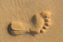 Avtryck av mänsklig fot på den sandiga stranden Arkivfoton