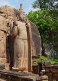 Avukana雕象是菩萨的一个常设雕象 斯里南卡 免版税图库摄影