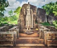 Avukana Buddha Statue Royalty Free Stock Photography