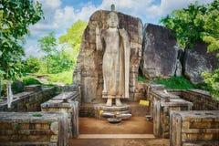 Avukana Buddha Statue Stock Image